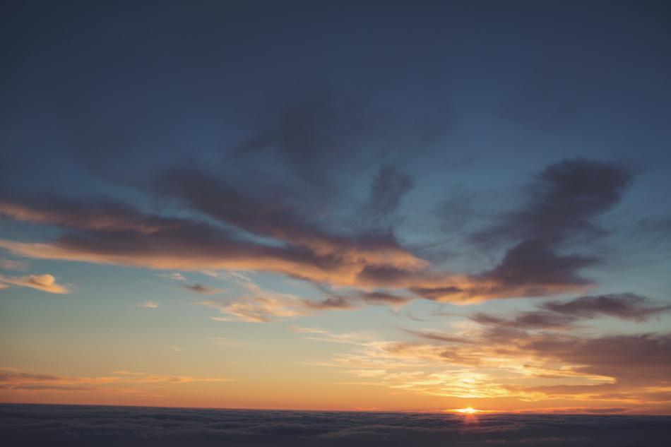 Mount Tamalpais Couple photos by Anne-Claire Brun0045