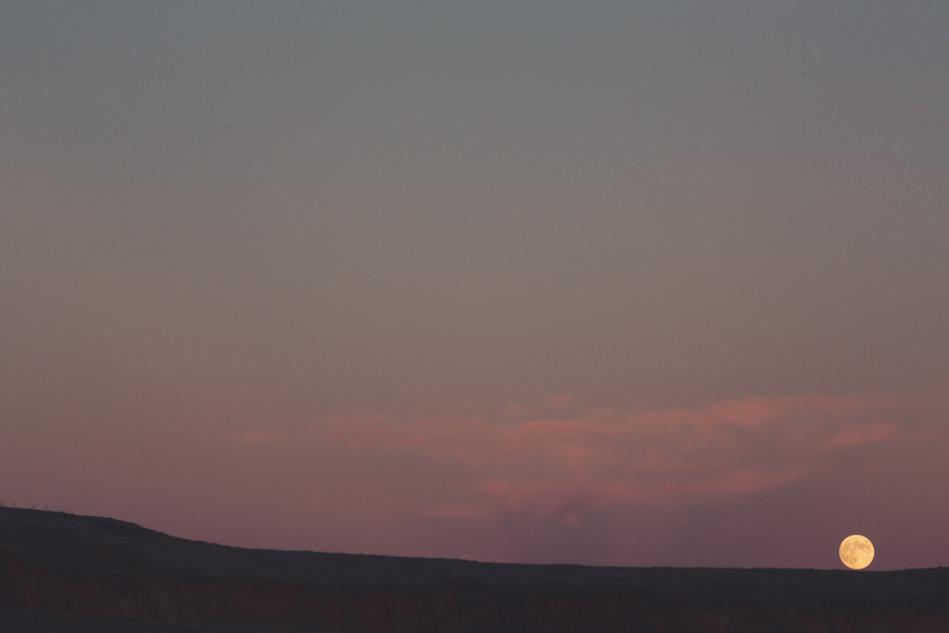Mount Tamalpais Couple photos by Anne-Claire Brun0048