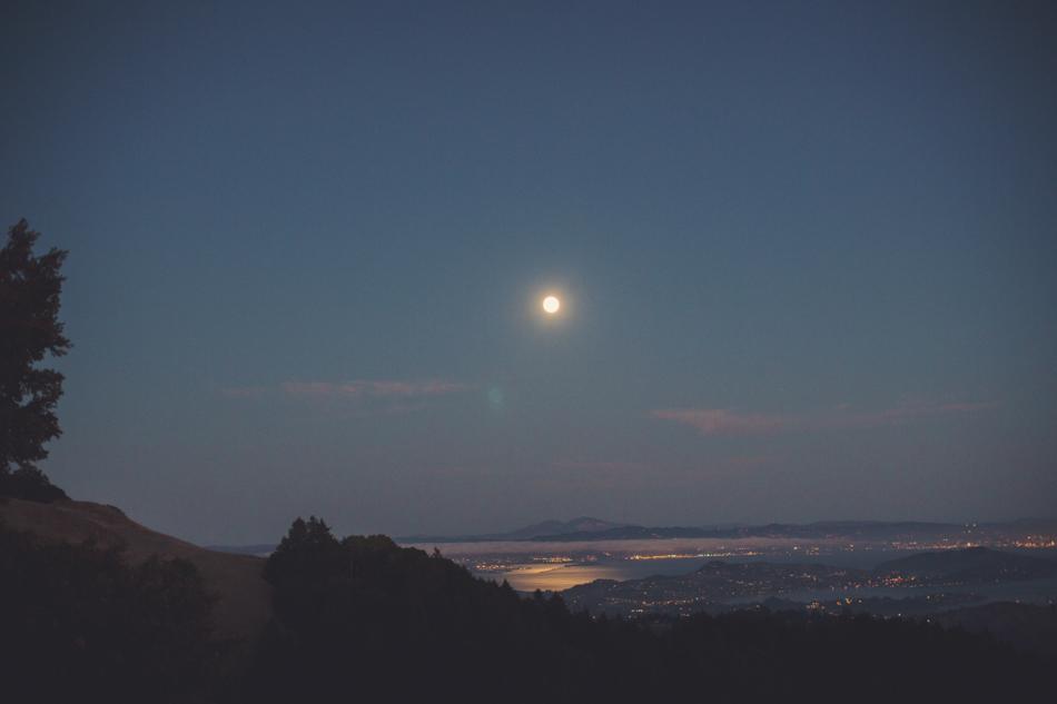 Mount Tamalpais Couple photos by Anne-Claire Brun0052