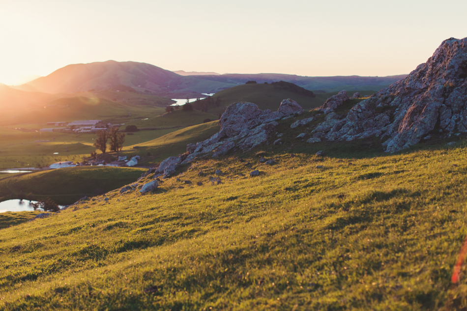 Cow Track Ranch Wedding Nicasio California by Anne-Claire Brun 039