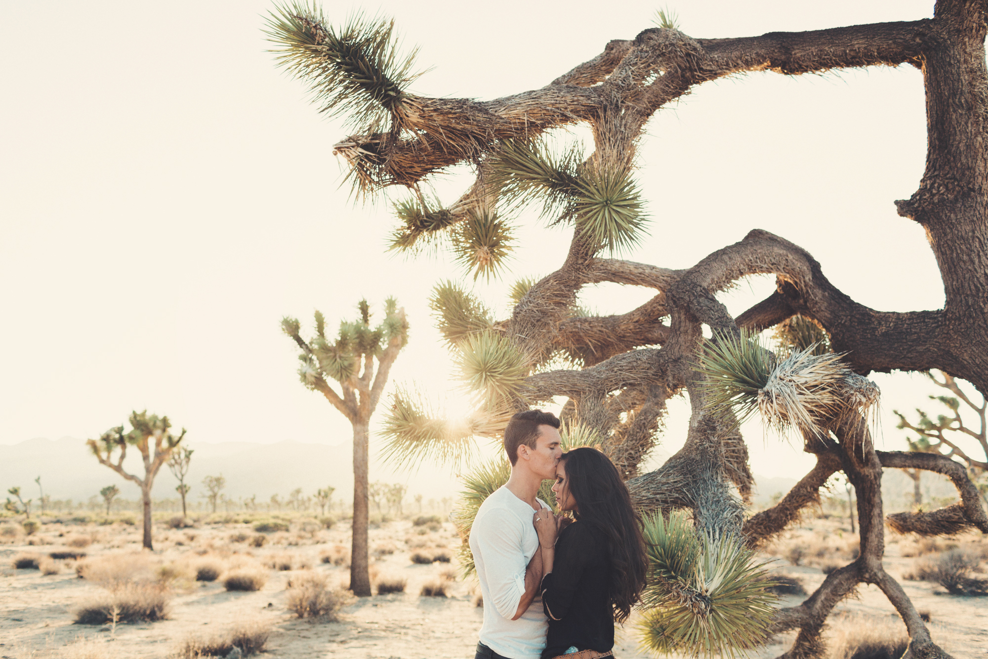 Joshua Tree engagement photos  @AnneClaireBrun 0021