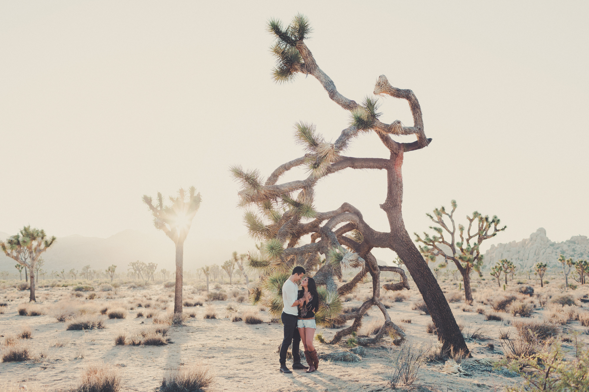 Joshua Tree engagement photos  @AnneClaireBrun 0023