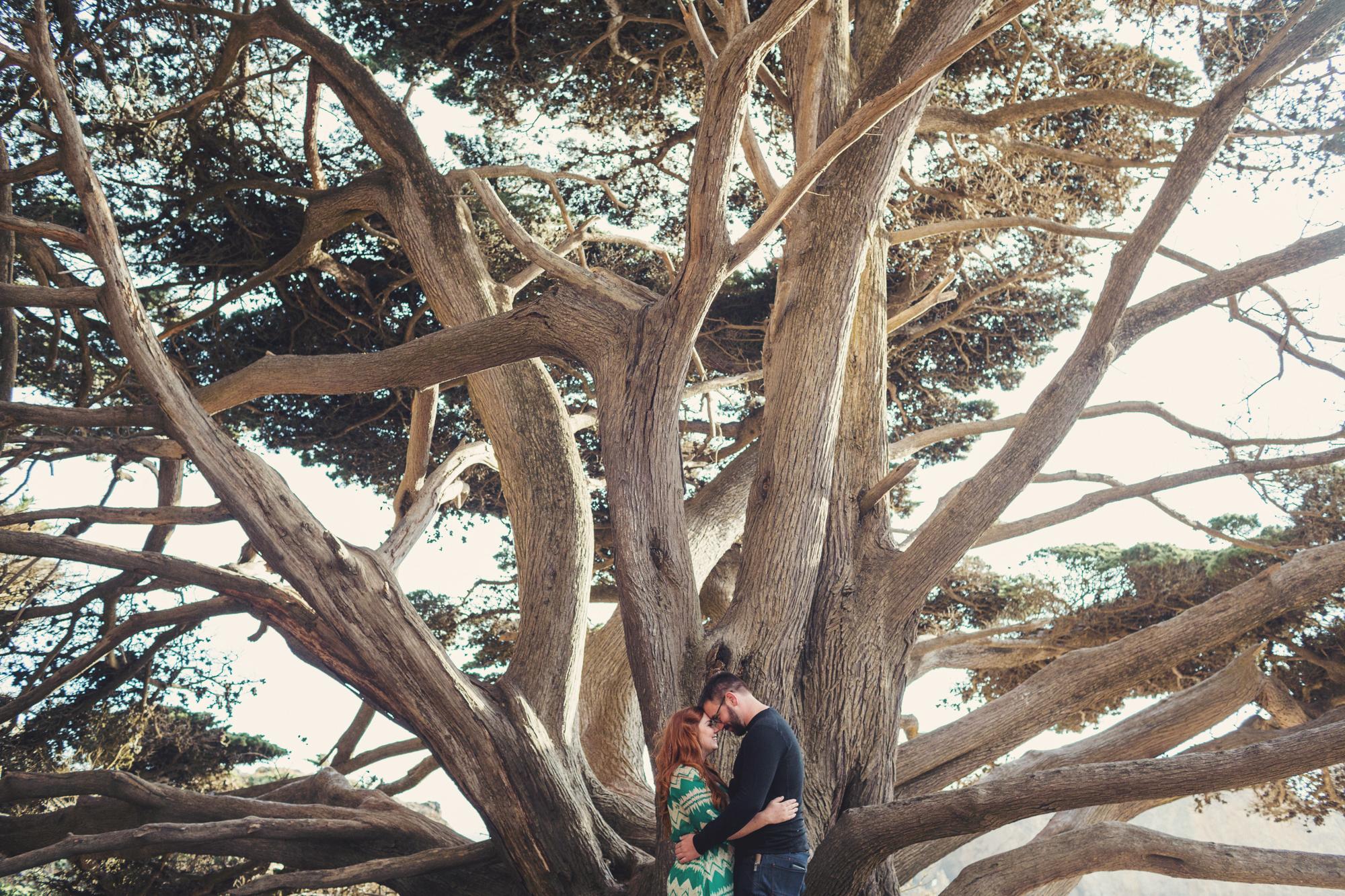 Engagement photos in Big Sur @Anne-Claire Brun 0002
