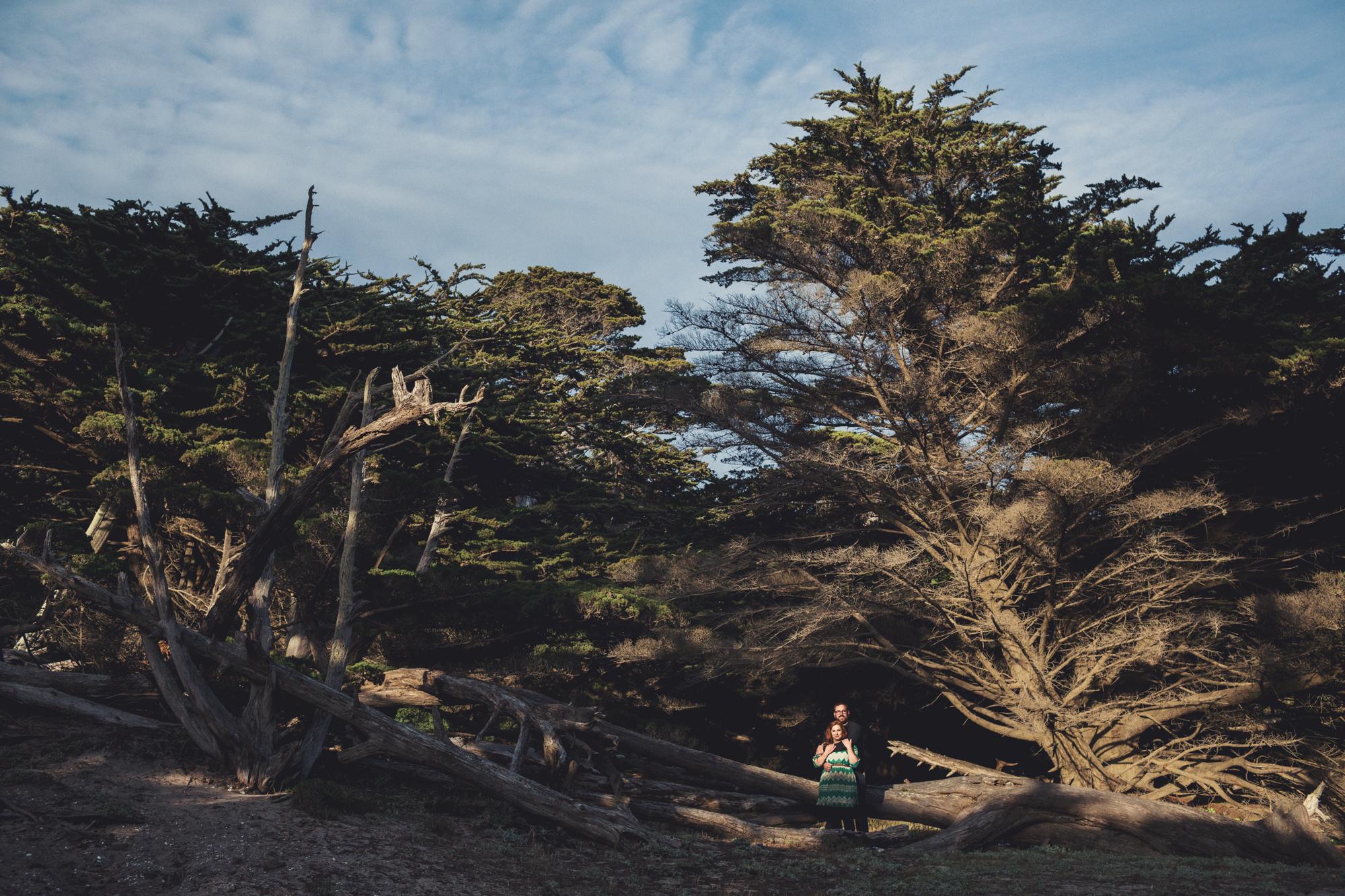 Engagement photos in Big Sur @Anne-Claire Brun 0004