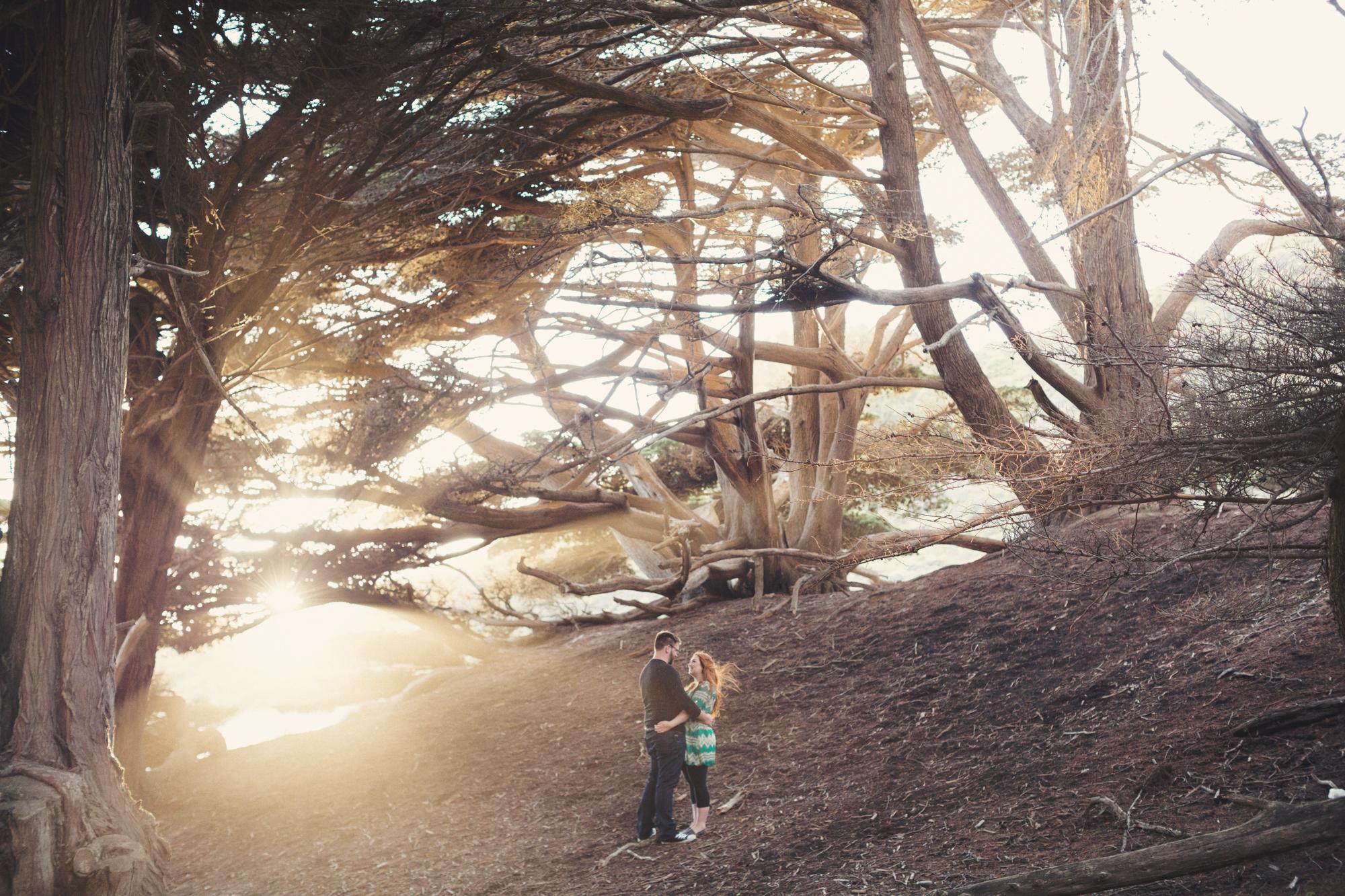 Engagement photos in Big Sur @Anne-Claire Brun 0013