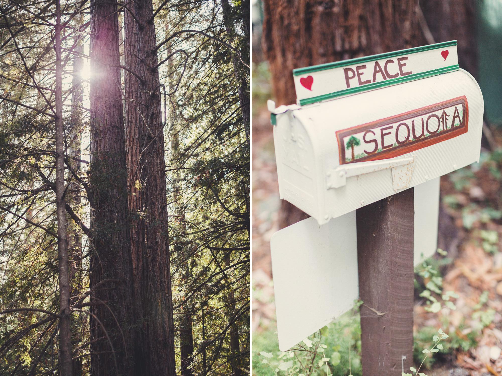 Sequoia Retreat Center Wedding@Anne-Claire Brun 02