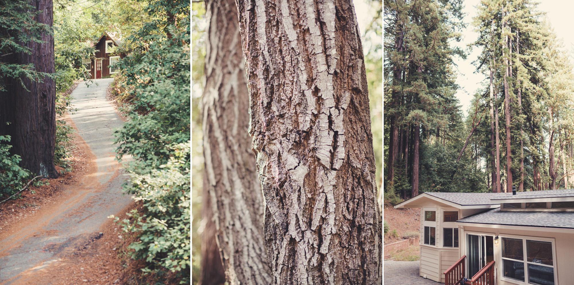 Sequoia Retreat Center Wedding@Anne-Claire Brun 08