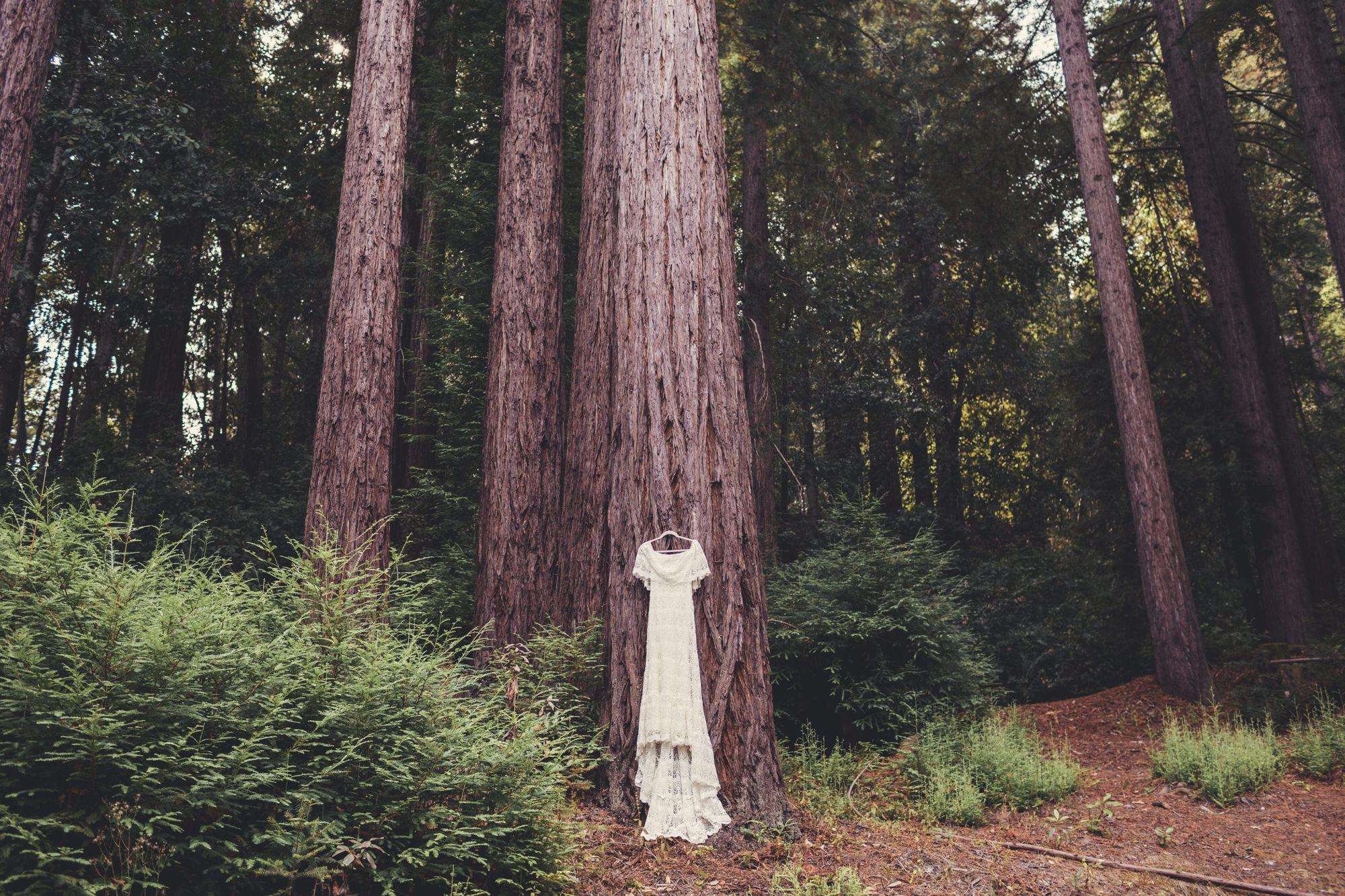 Sequoia Retreat Center Wedding@Anne-Claire Brun 13