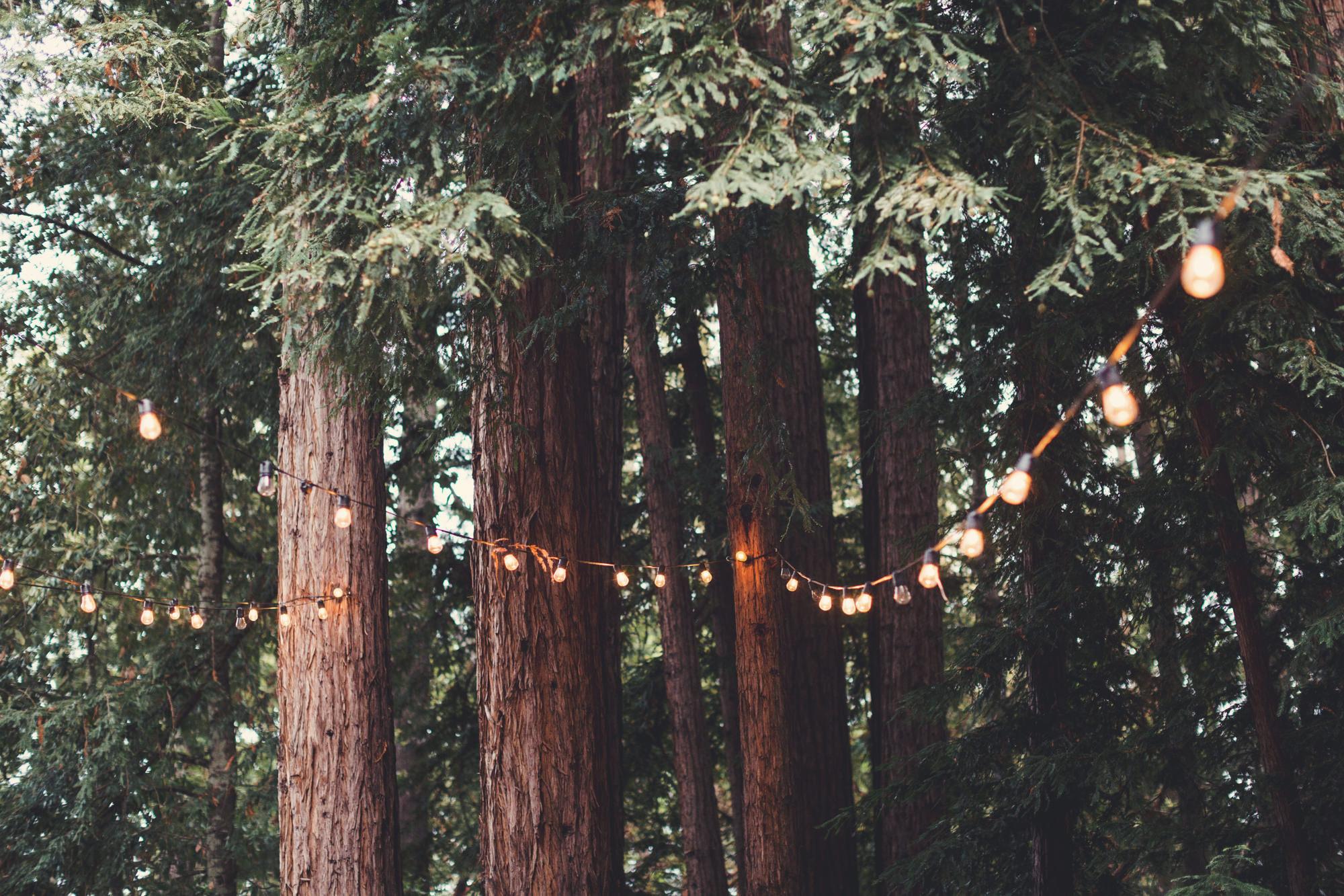 Sequoia Retreat Center Wedding@Anne-Claire Brun 151