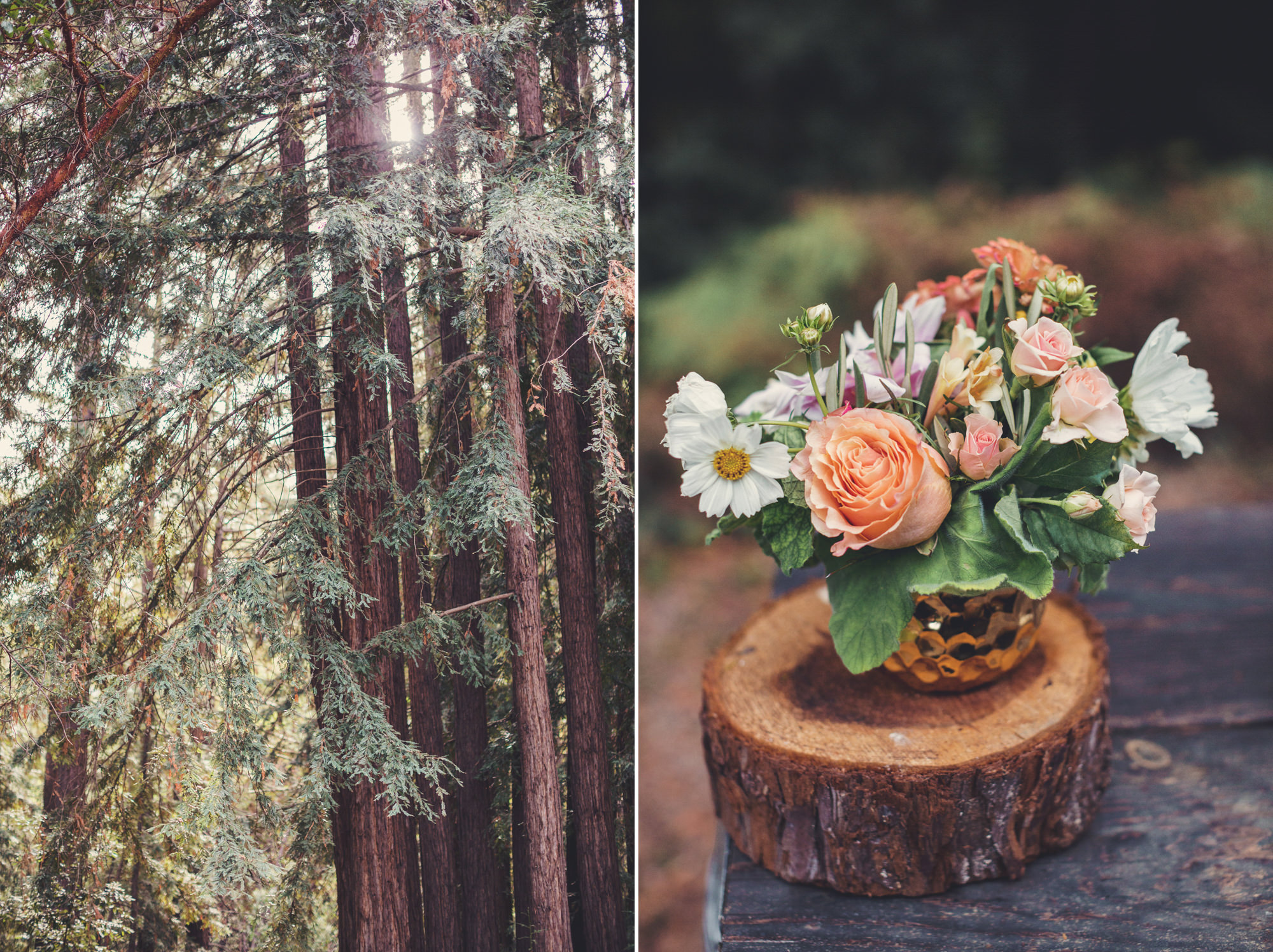 Sequoia Retreat Center Wedding@Anne-Claire Brun 169
