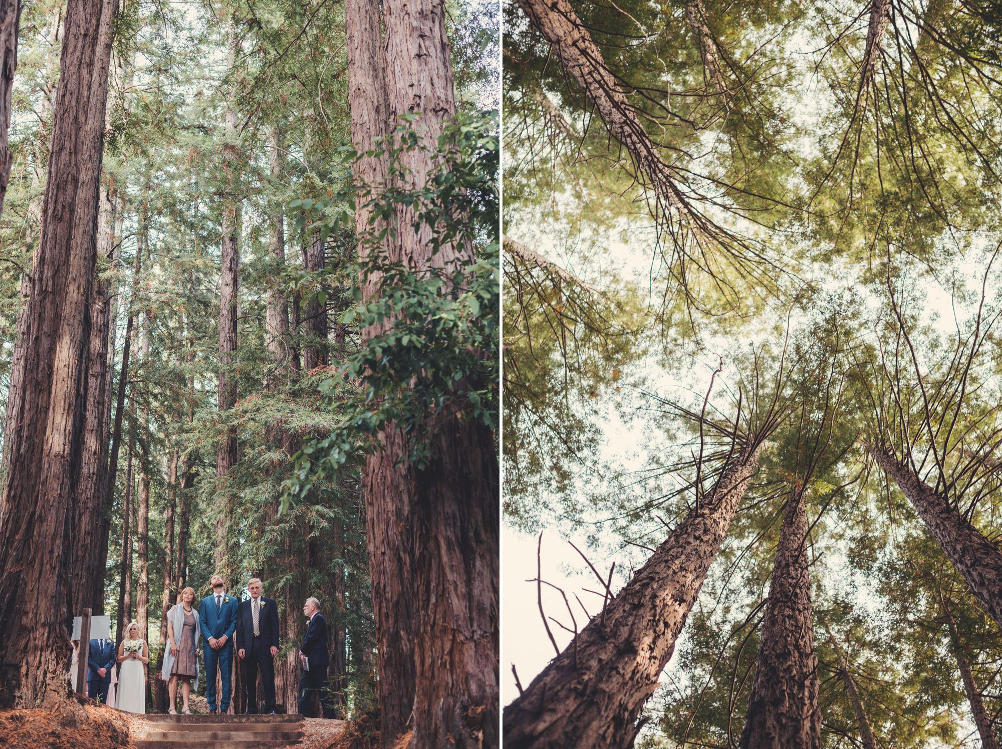 Sequoia Retreat Center Wedding Anne Claire Brun 57
