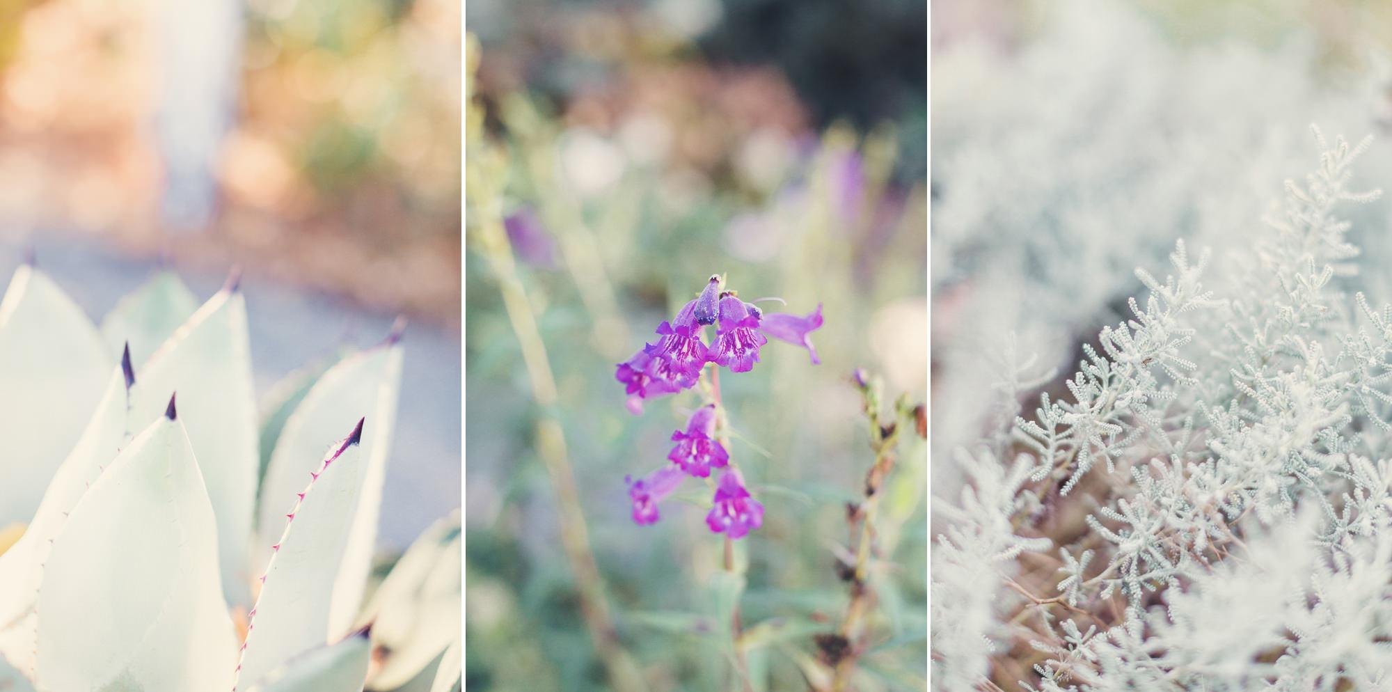 Garden Valley Ranch Wedding@Anne-Claire Brun 25