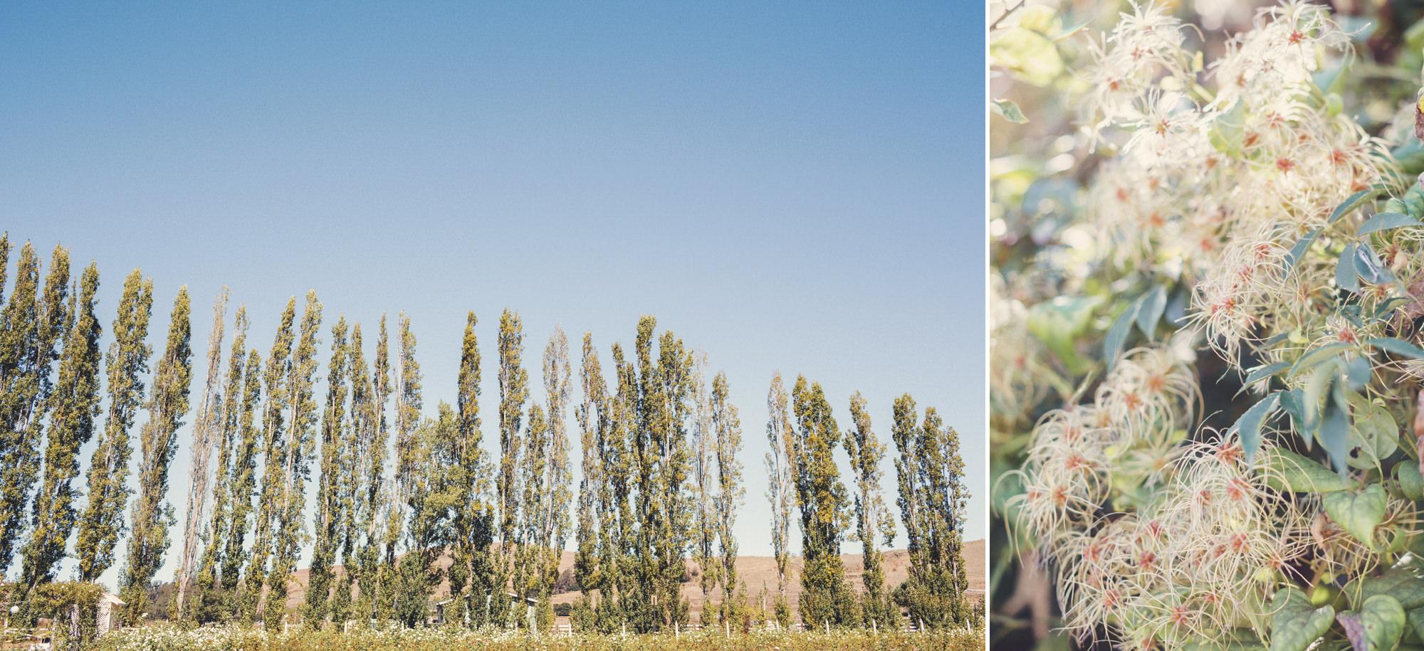 Garden Valley Ranch Wedding@Anne-Claire Brun 26