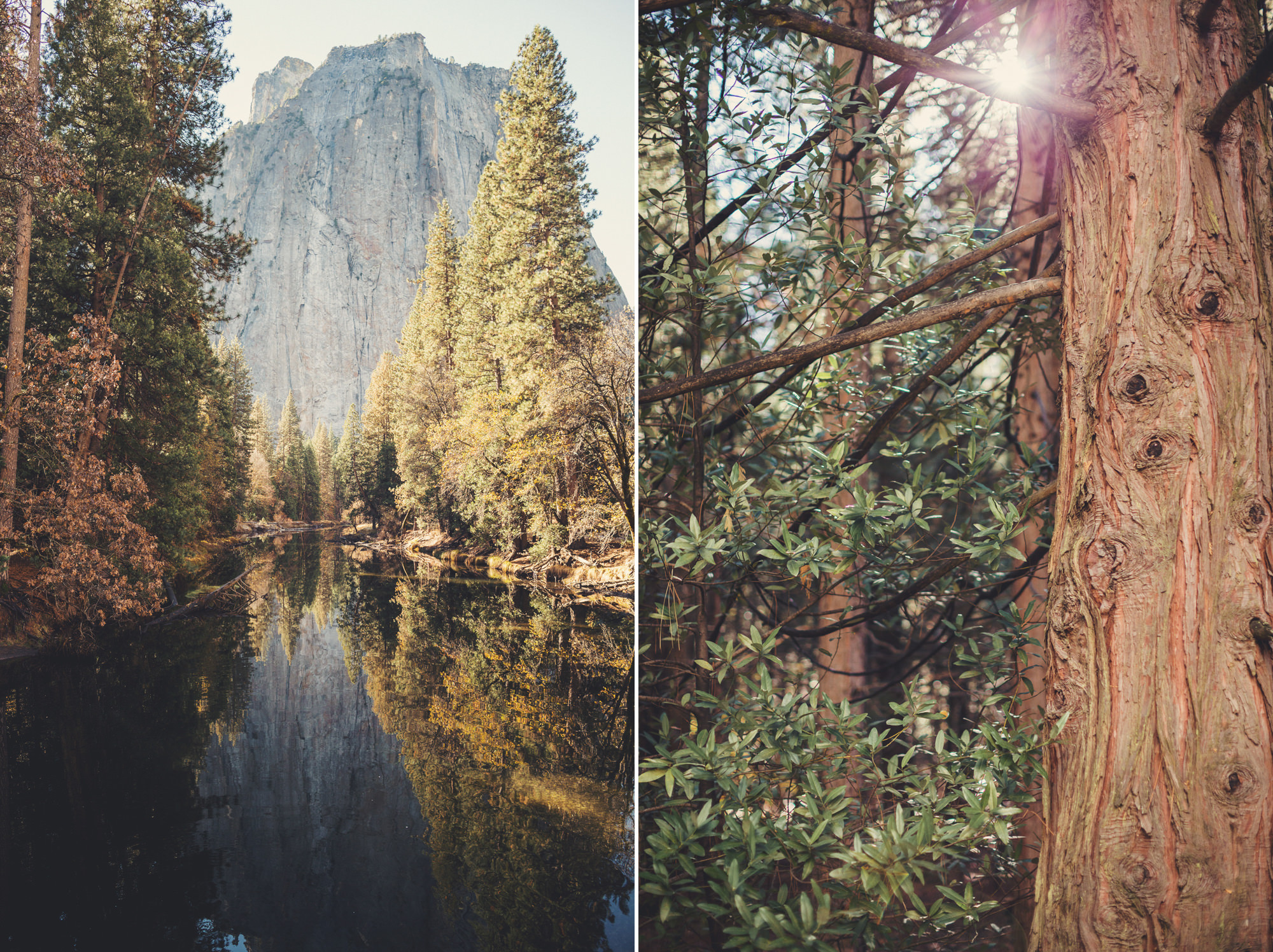 Yosemite wedding ©Anne-Claire Brun 17