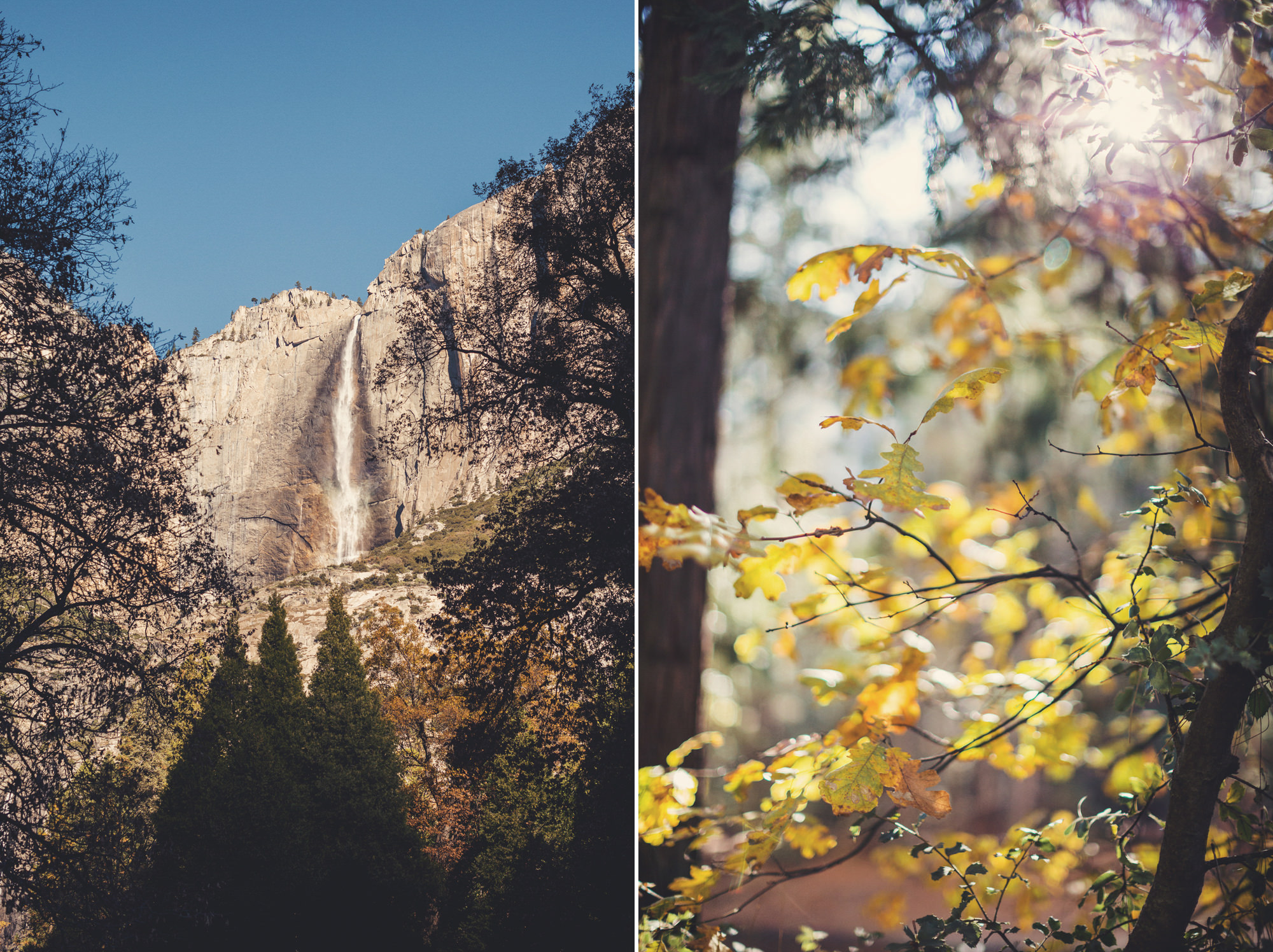 Yosemite wedding ©Anne-Claire Brun 24