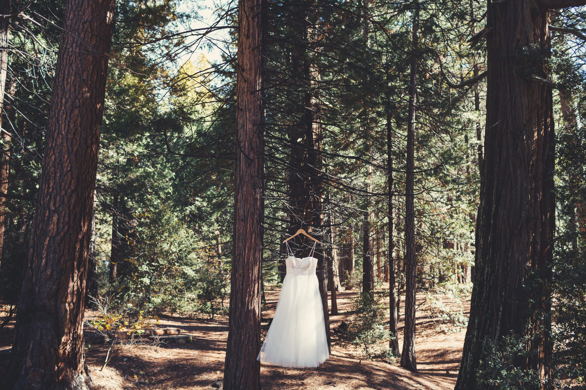 Yosemite wedding ©Anne-Claire Brun 39
