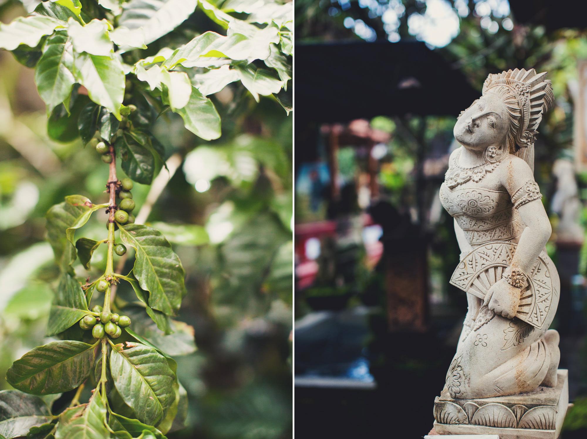A Taste of Asia ©Anne-Claire Brun 23