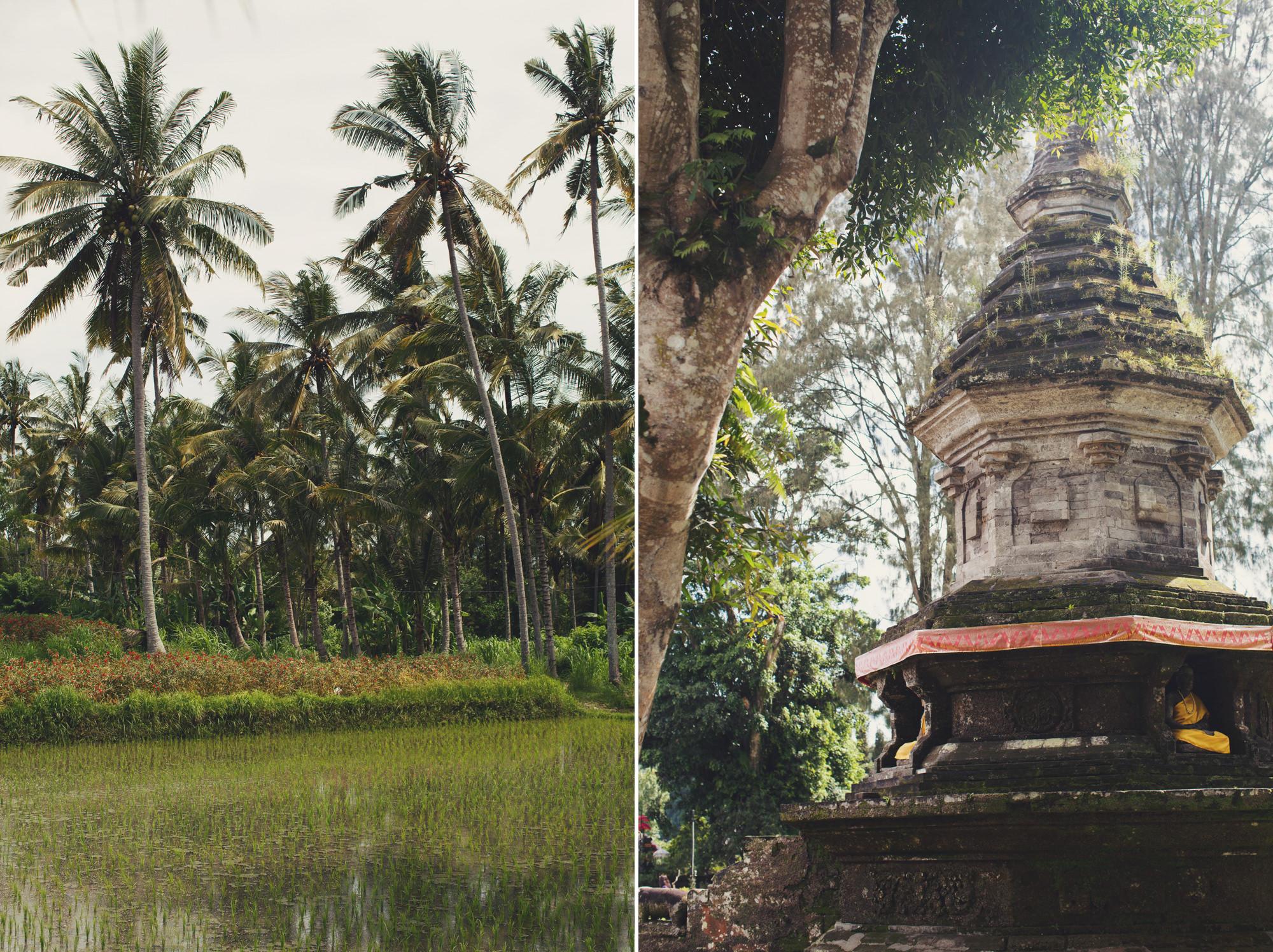 A Taste of Asia ©Anne-Claire Brun 49