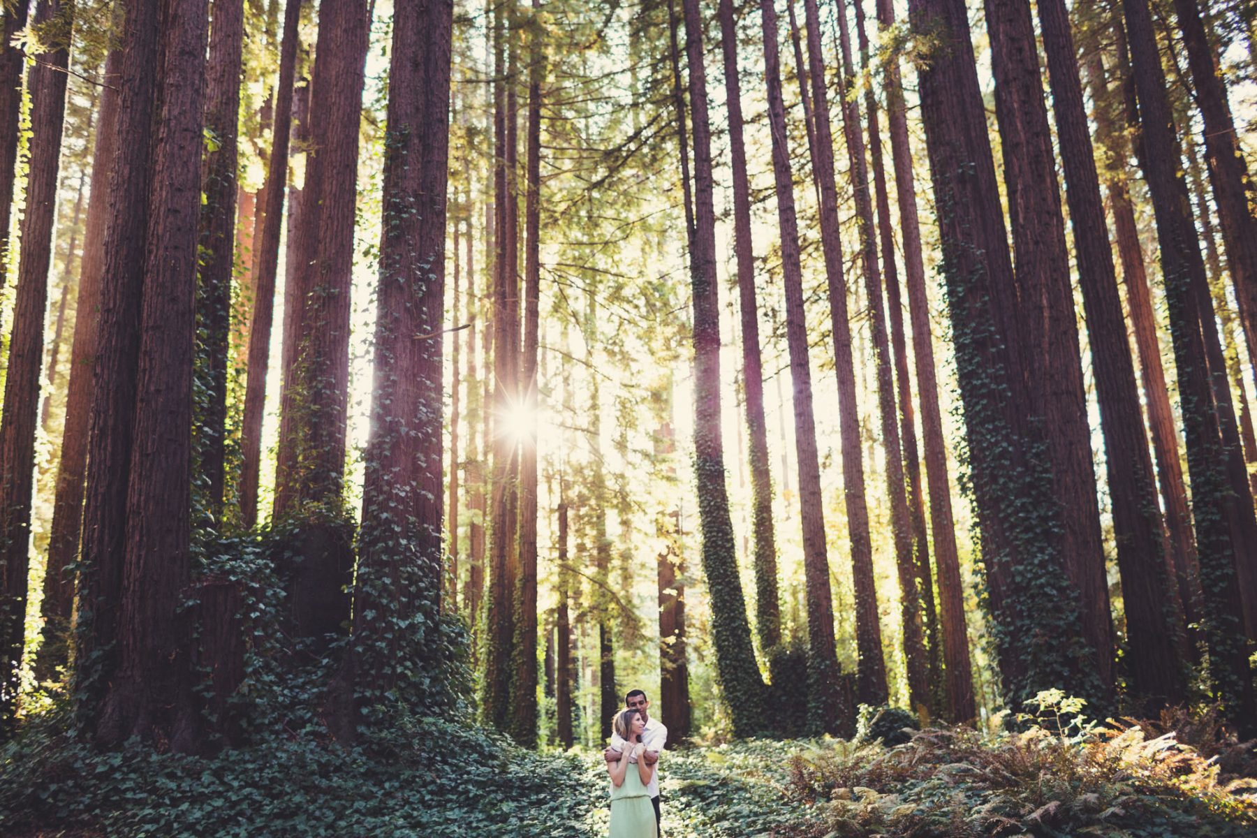 California Wedding photographer -  ©Anne-Claire Brun 04