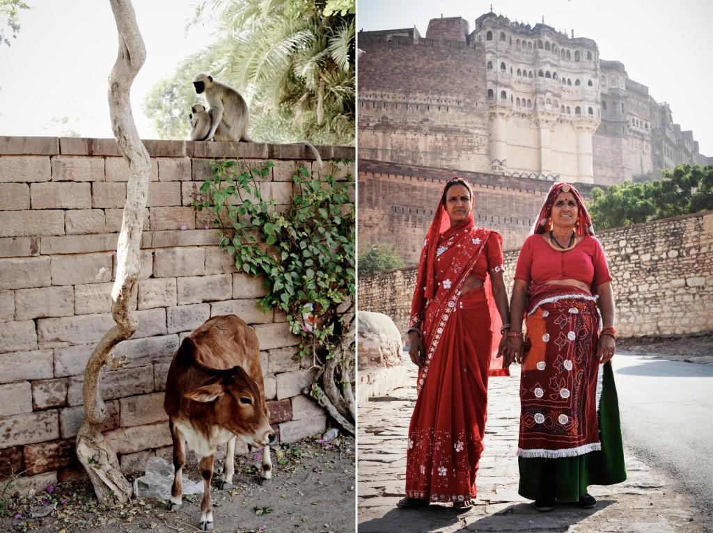 india ©Anne-Claire Brun 32