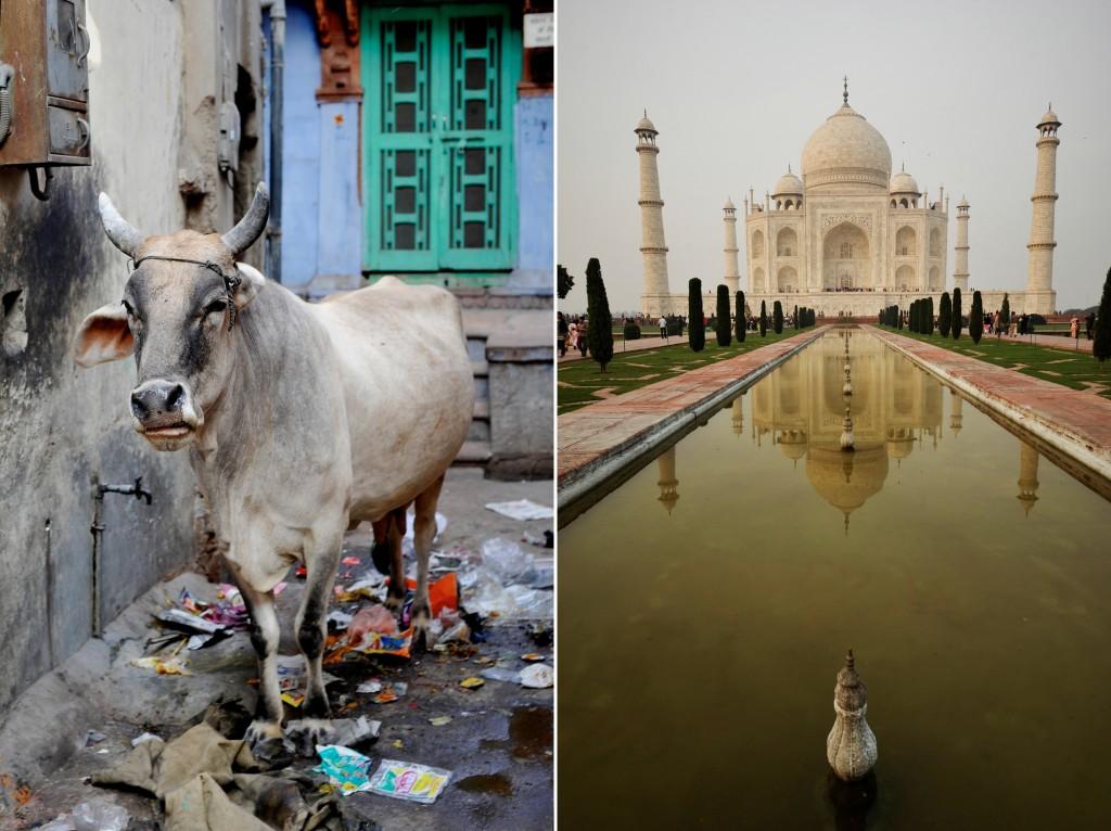 india ©Anne-Claire Brun 87