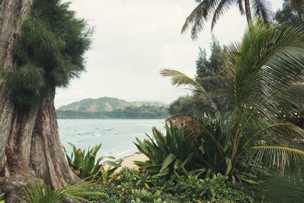 Hawaii Wedding Photographer @Anne-Claire Brun 112