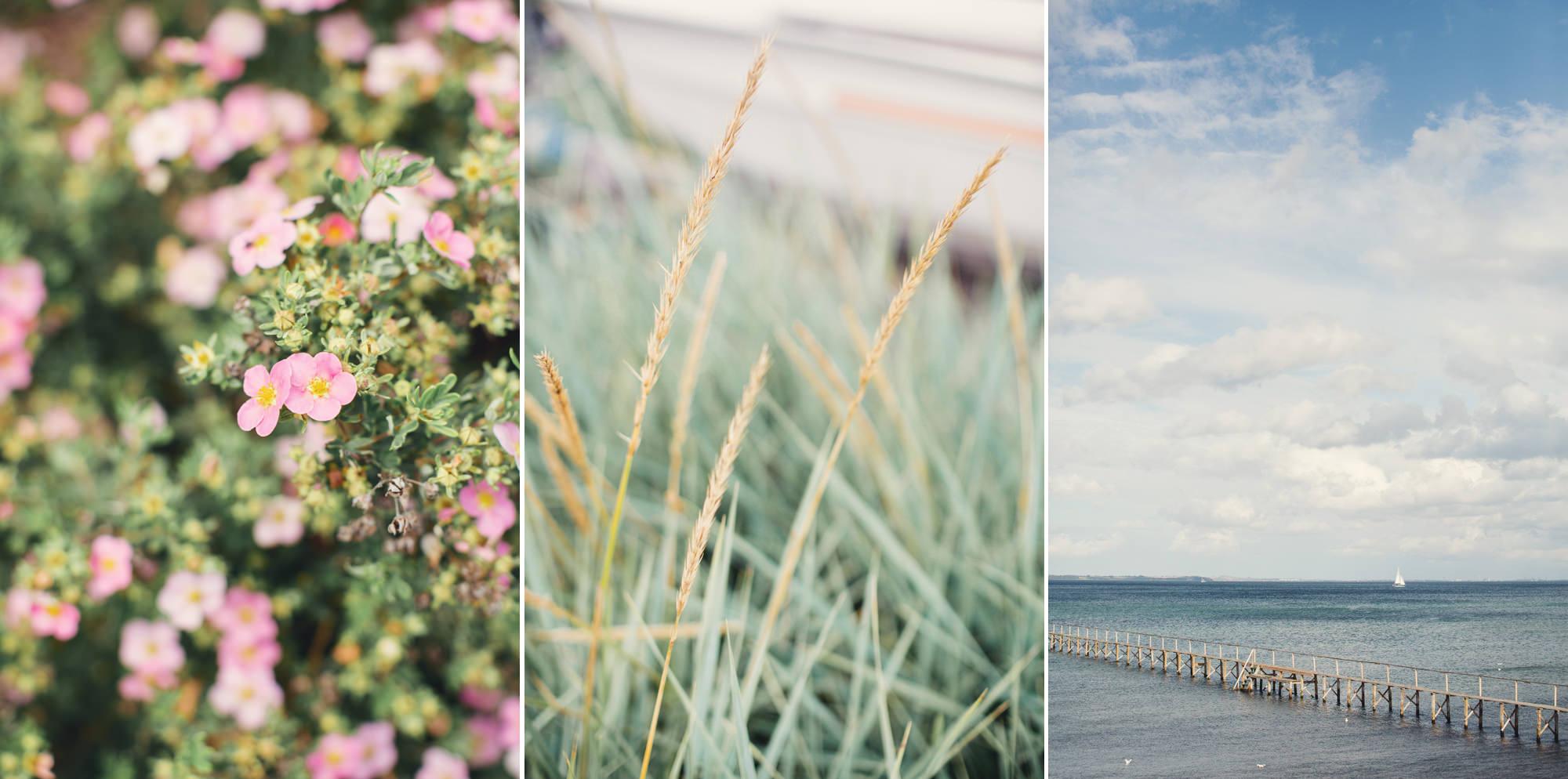Oceanside Wedding in Denmark ©Anne-Claire Brun 0026