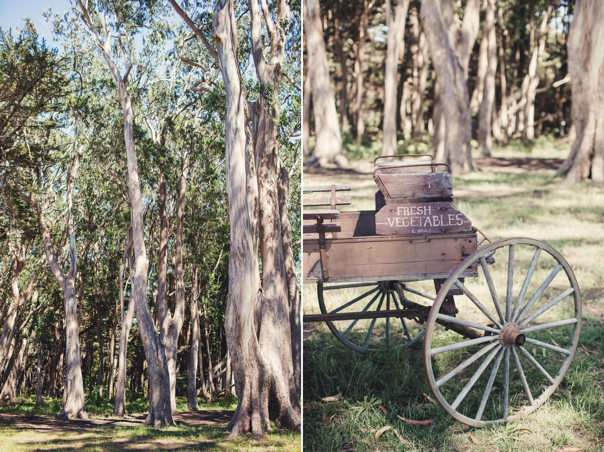 Wedding in Spring Ranch ©Anne-Claire Brun 0022