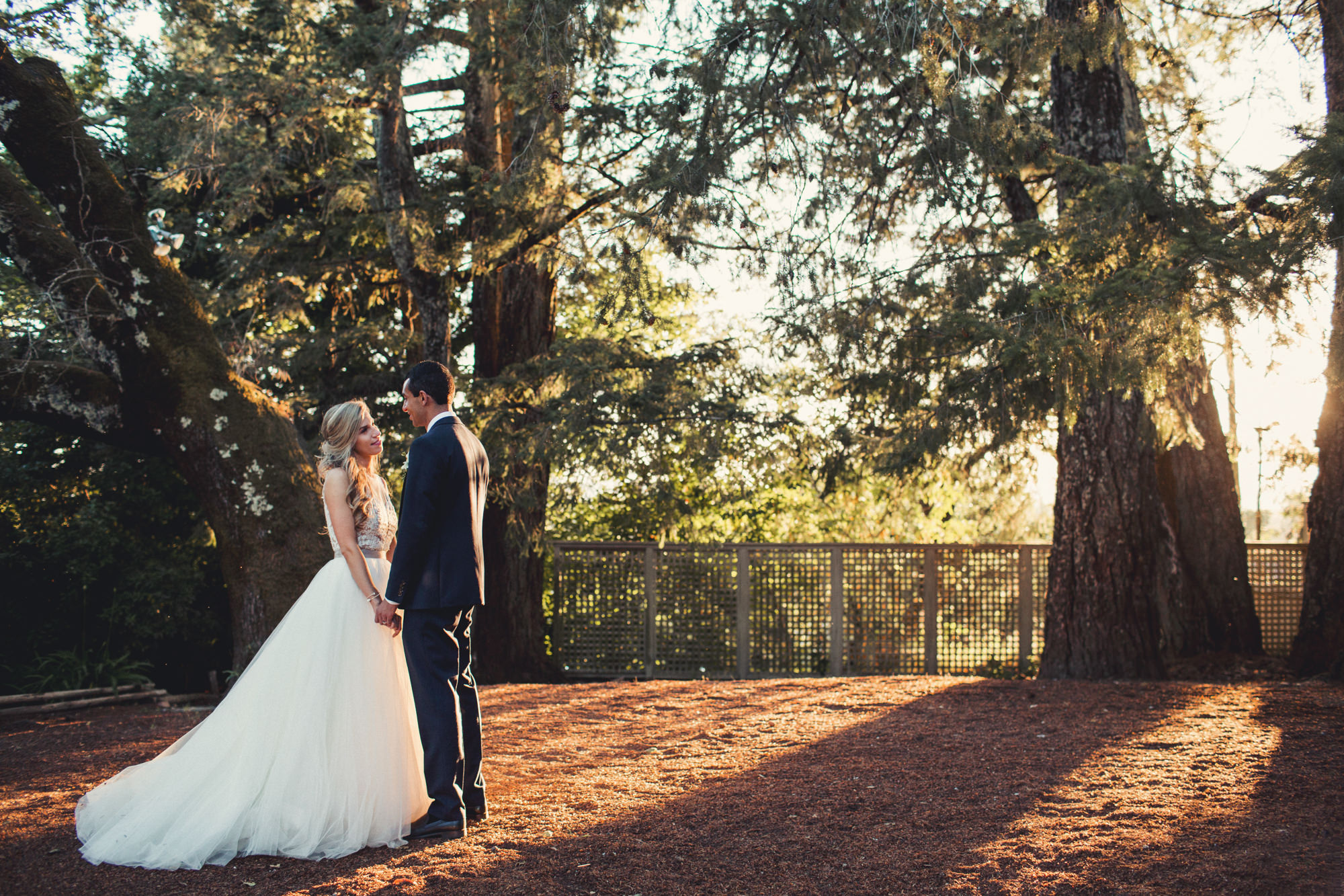 Wedding in Vine Hill House ©Anne-Claire Brun 0059