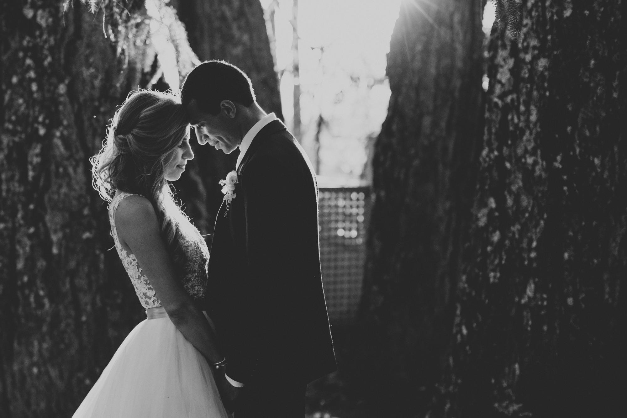 Wedding in Vine Hill House ©Anne-Claire Brun 0064