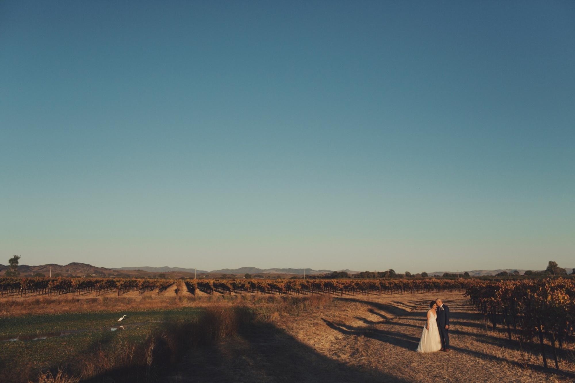 Napa Valley Vineyard Wedding