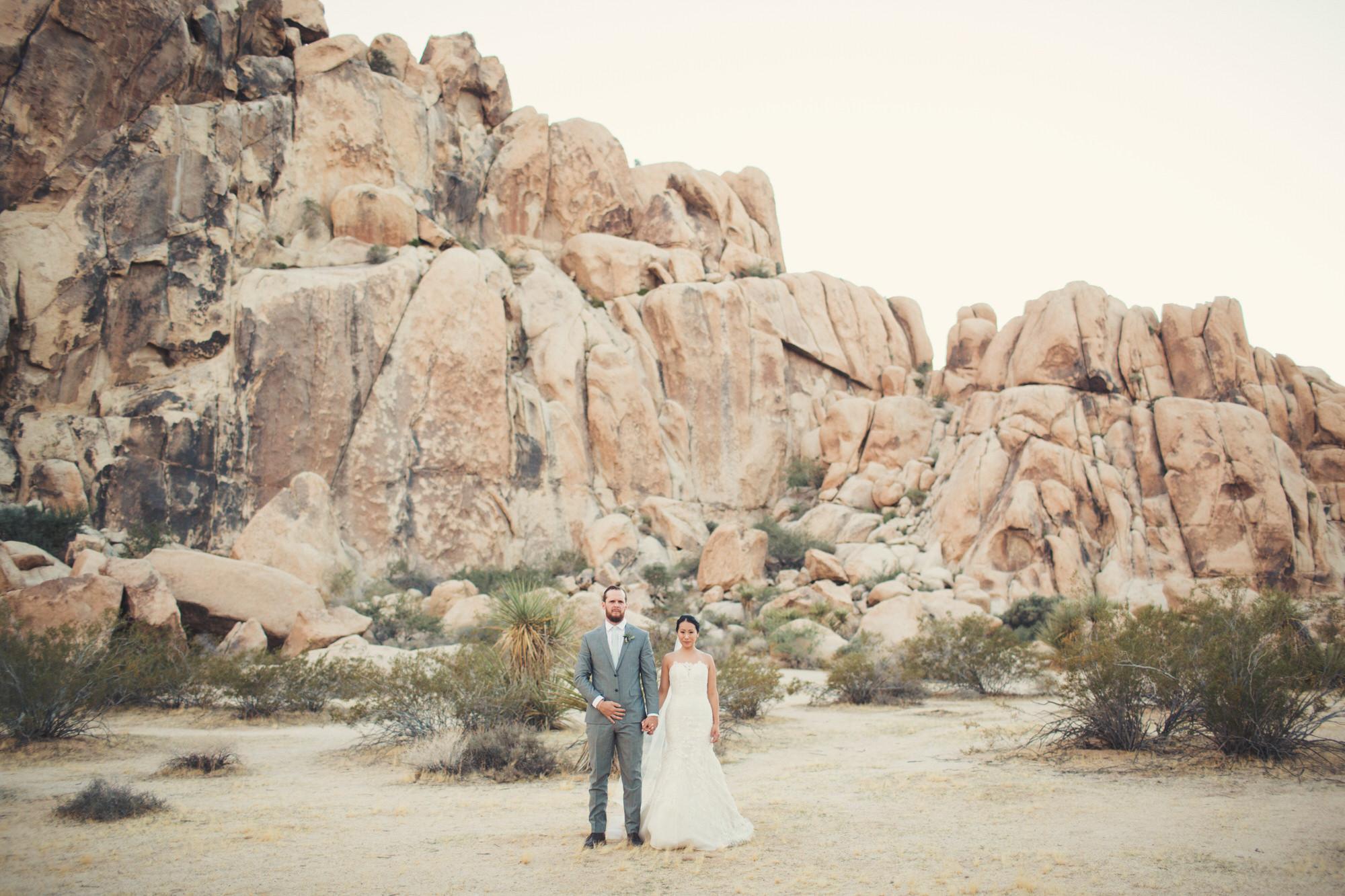mojave desert wedding