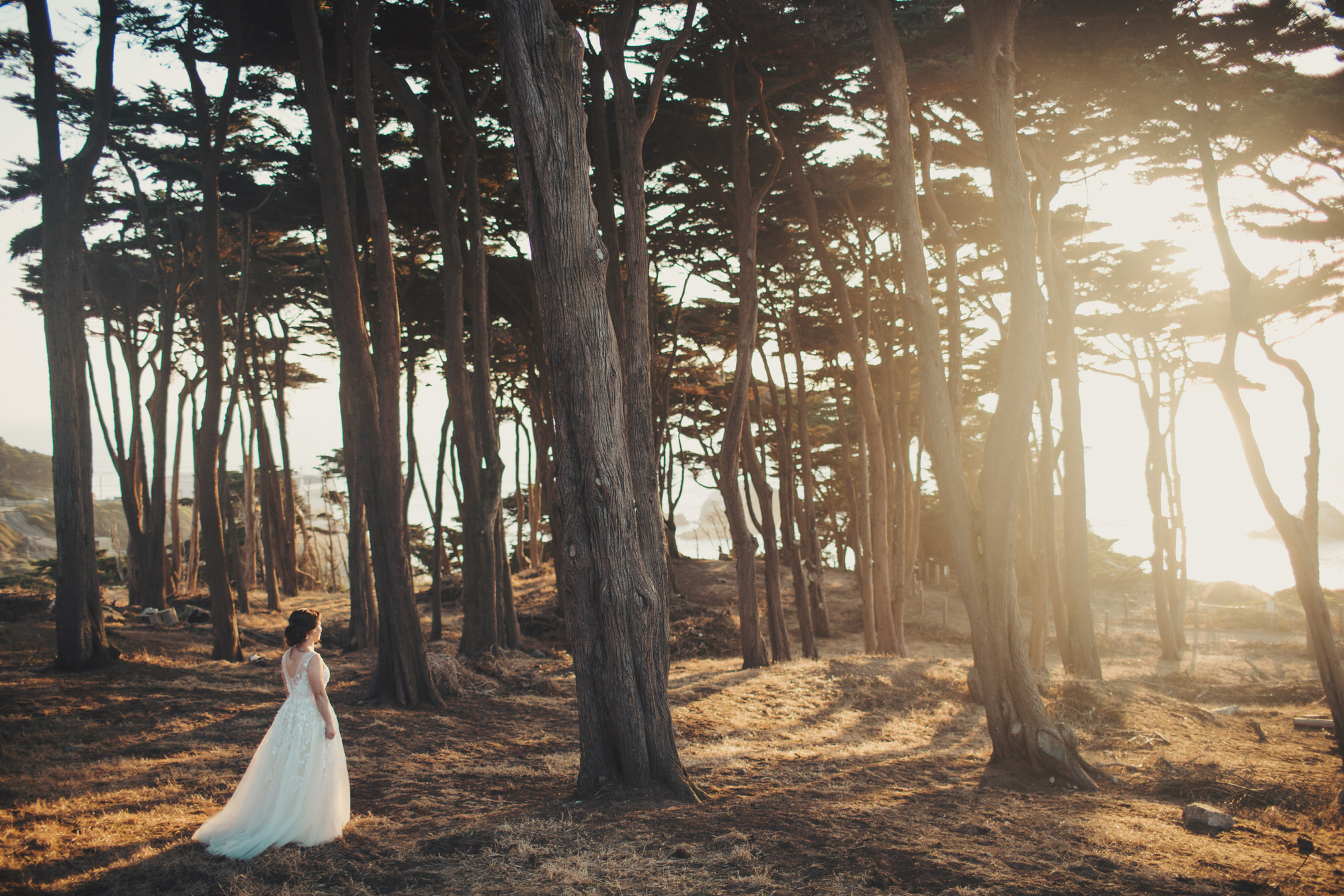 SF wedding photographer
