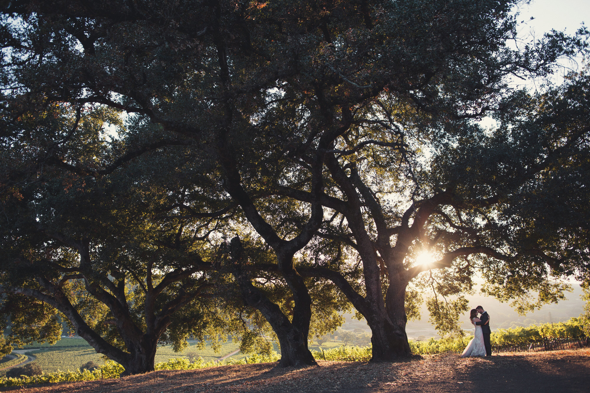 kunde winery wedding photographer