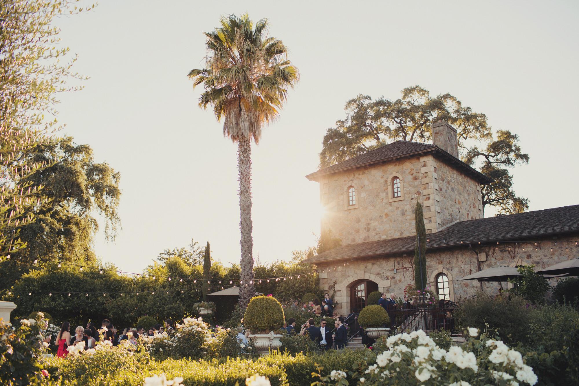 St Helena Wedding Photographer