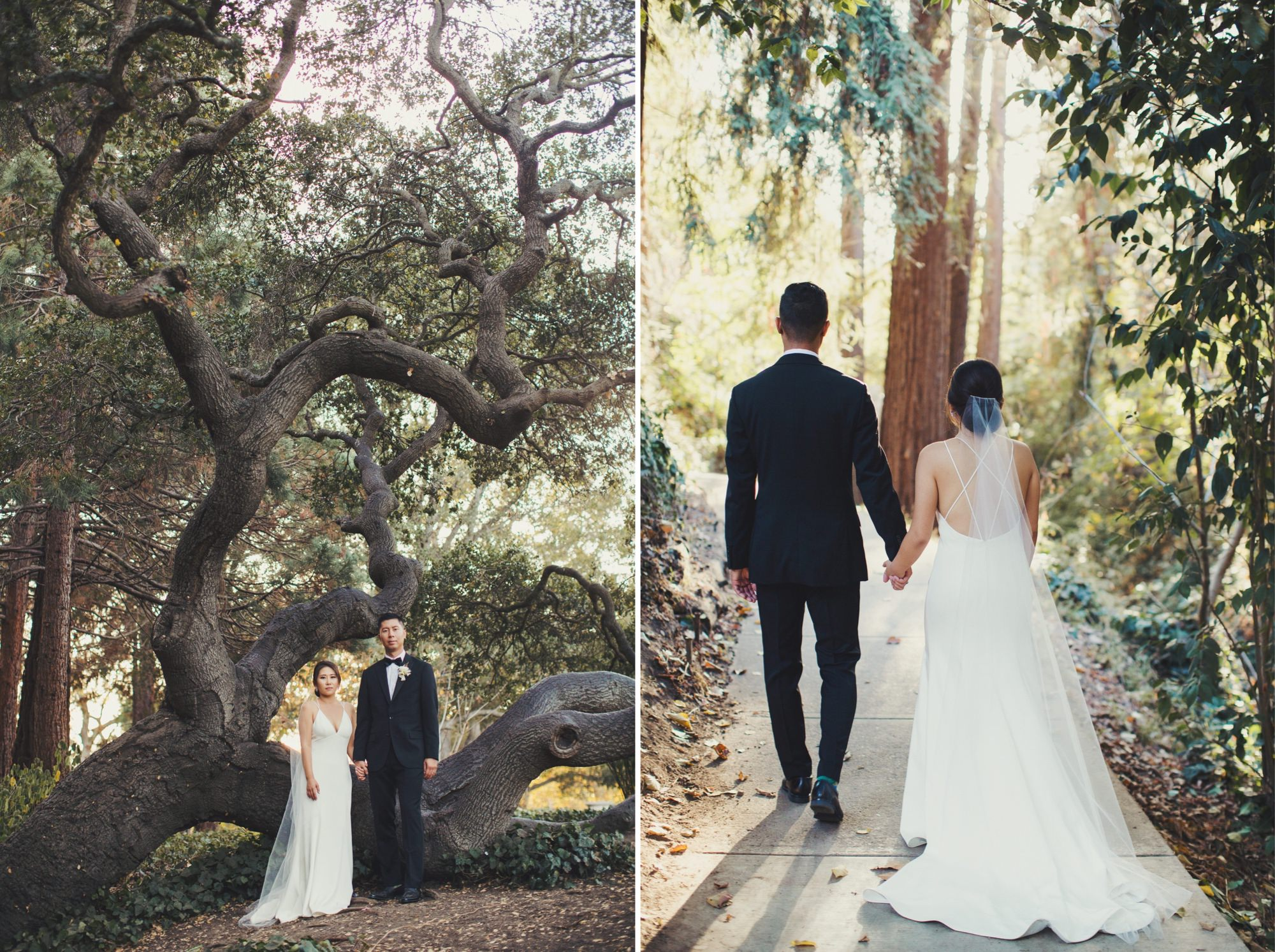 couple in a forest on wedding day
