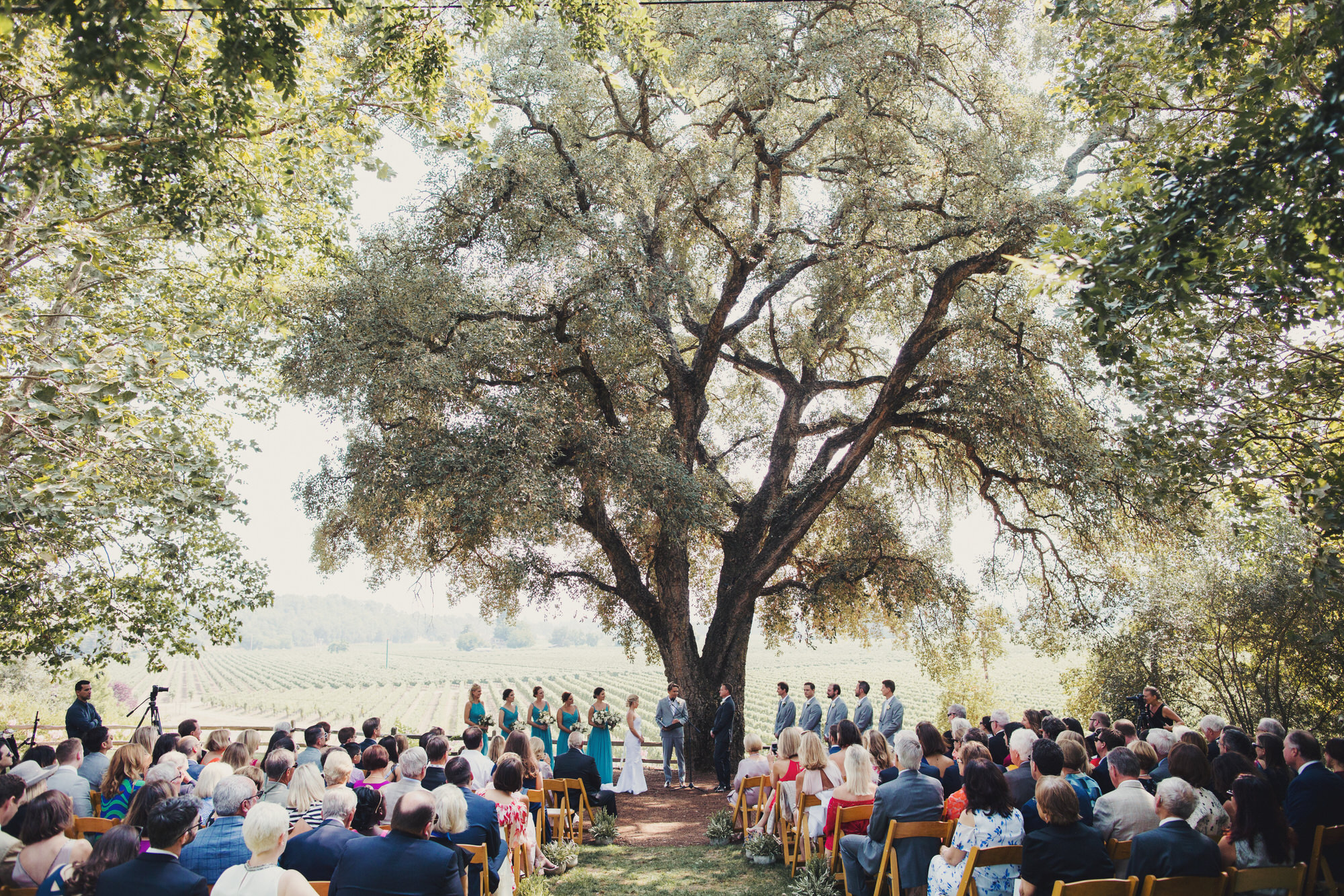 wedding ceremony under an oak tree