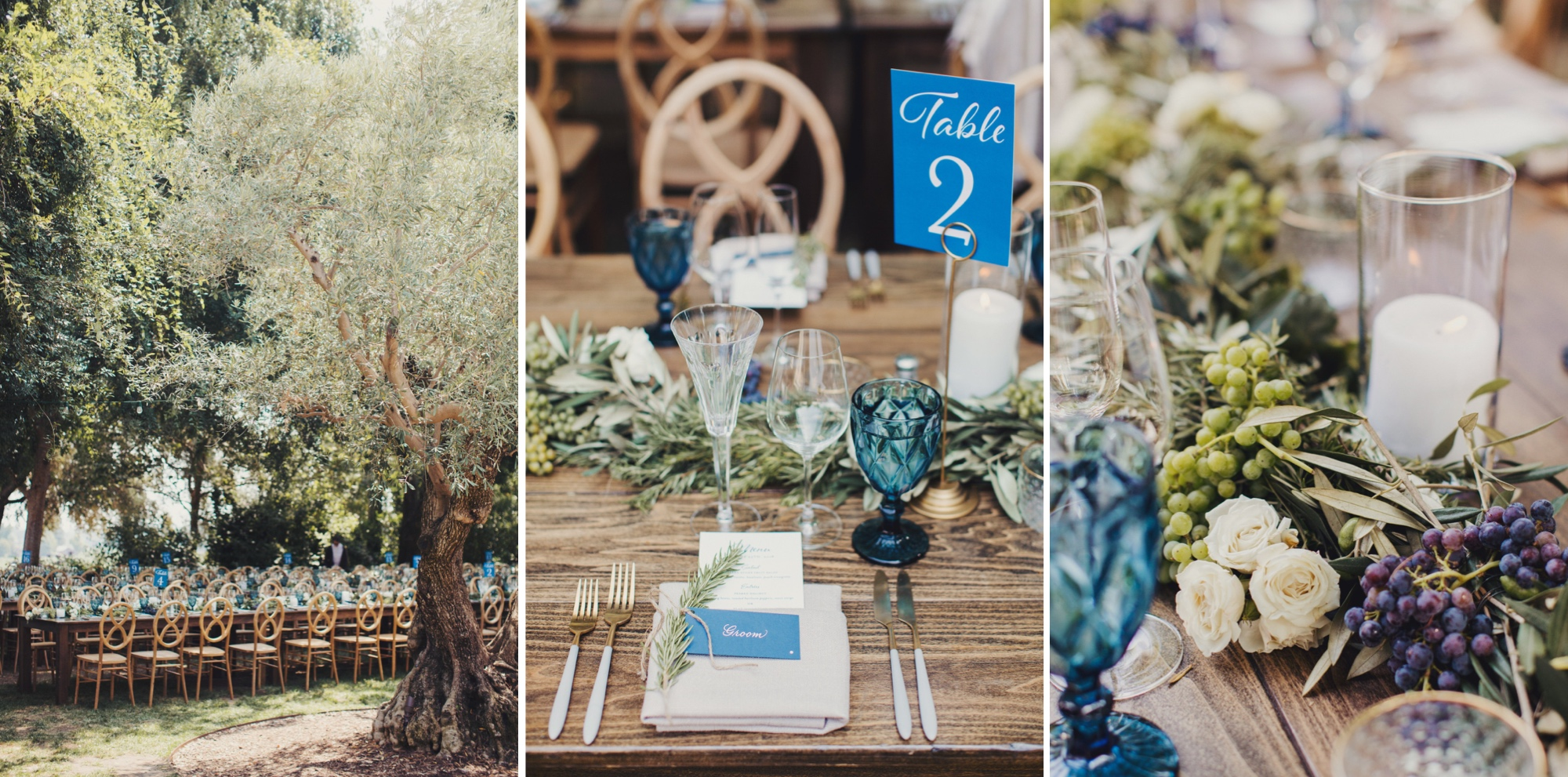 Barn wedding in Healdsburg