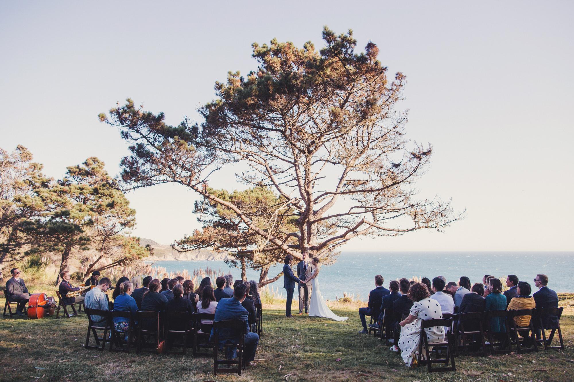 timber cove wedding